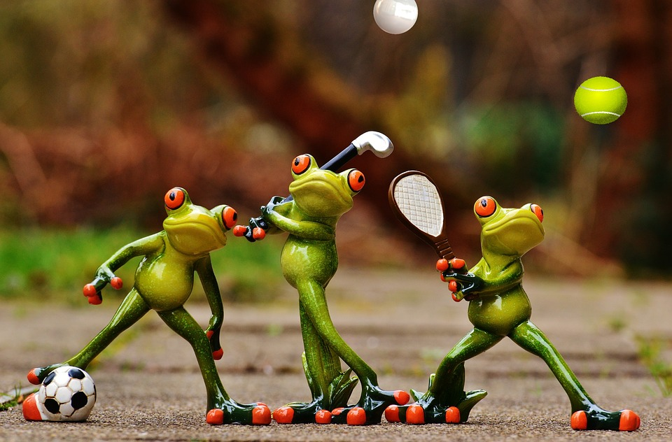 frogs-1213652_960_720