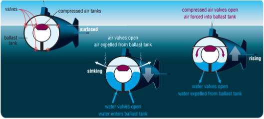 Image Credit: The Yellow Submarine Science Project